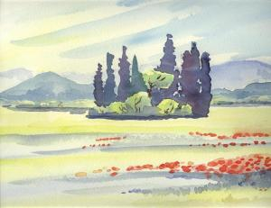 Cyprés, plaine sous Roquebrune; aquarelle
