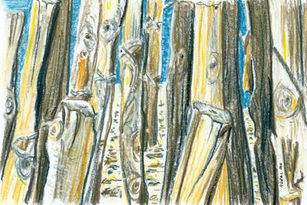 Presqu'île de Giens n° 4,  pastel ,Tous droits réservés