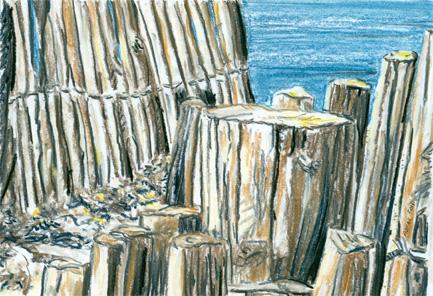 Presqu'île de Giens n°3, pastel