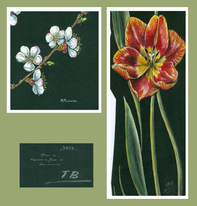 tulipes, cerisiers, gouache par Alix, Micheline Mansion