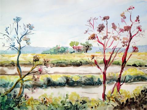 Les Salins de Hyères, aquarelle, tous droits réservés