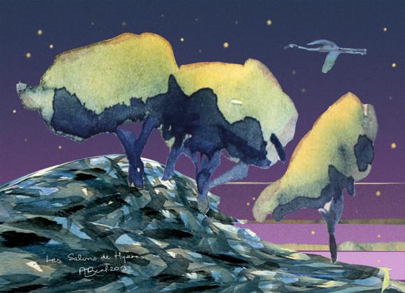 une nuit sous les pins maritimes des Salins de Hyères. aquarelle et numérique. Tous droits réservés.