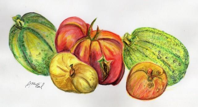 Les fruits et légumes du jardin d'Arnault !